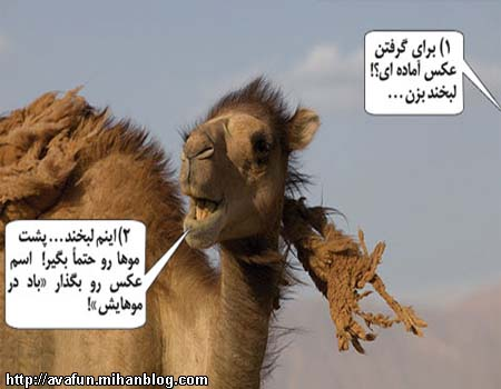 عکسهای خنده دار